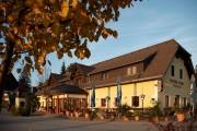 Der Gasthof Orthofer: gelbes Haus mit braunem Dach. Gesäumt wird der Gasthof von einem Baum mit herbstlichen Blättern.